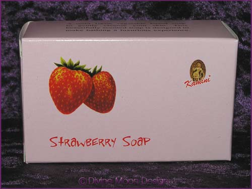 Kamini Aromatics 100gm SOAP boxed bar - STRAWBERRY
