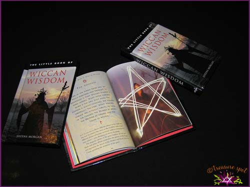 The little Book of - WICCAN WISDOM - Sheena Morgan